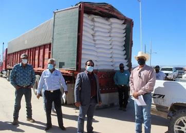 Entregaron 100 toneladas de maíz a ganaderos, en Ojinaga ayer